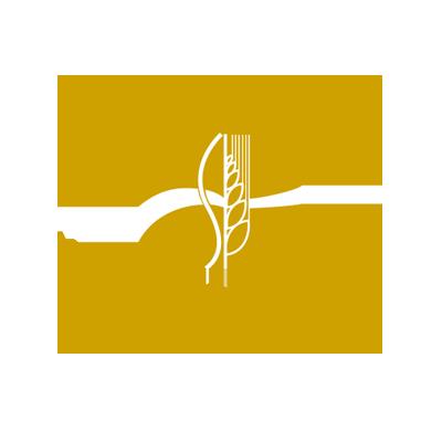 logo-MAPM